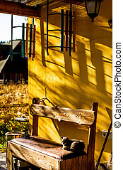 A cat sits on a bench on a sunny day.