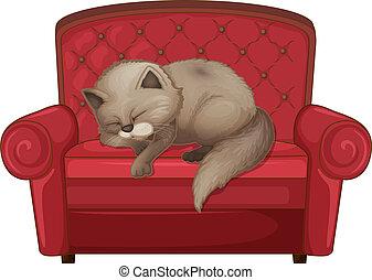 A cat sleeping on the sofa