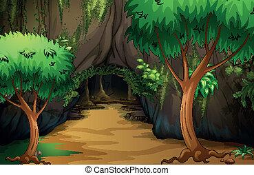 a, caverne, à, les, forêt