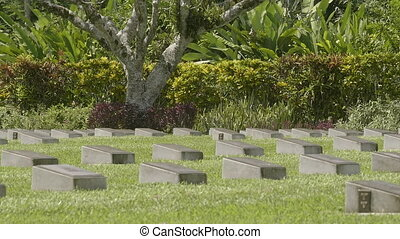 A cemetery tombstone and trees - A medium shot of a...