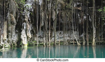 a cenote in mexico. these sinkholes are one of the natural wonders of the world