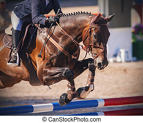 A chestnut horse jumps over a high barrier at jumping competitions.