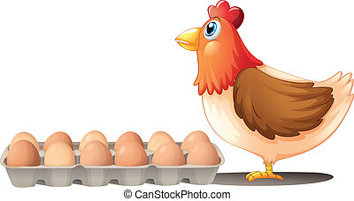 A chicken and a tray of eggs