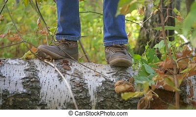 a child funny jumps on a fallen tree in the Park