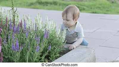A child near a flower bed