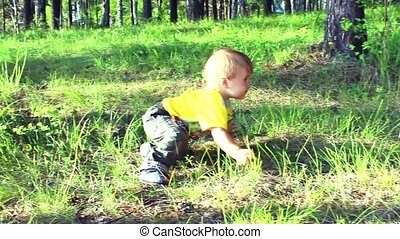 a child plays in the grass in the forest