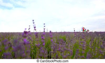 A child runs across the field of lavender with colored balls