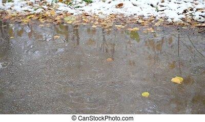 a child runs through puddles in autumn park
