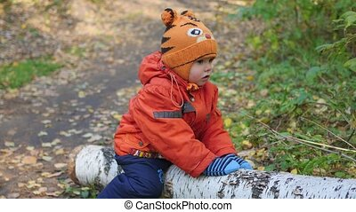 a child swinging on a fallen tree in the Park