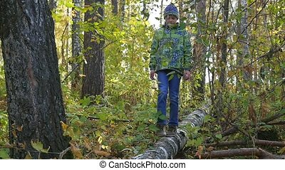 a child walks on a fallen tree in the autumn Park