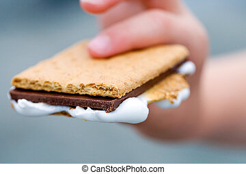 a child's hand holding a delicious Smore with Graham Cracker, Chocolate and Marshmallow
