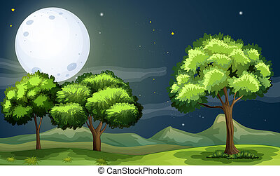 A clean and green forest under the bright fullmoon