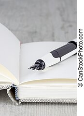 A close up of a fountain pen lying on an open journal diary notebook