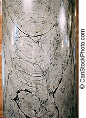 A close-up of the texture of a tall white marble column with black streaks.