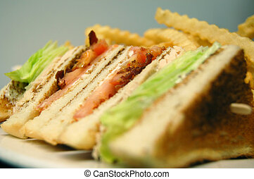 a closeup of a turkey club sandwich on a plate with fries