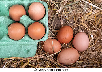 A collection of brown free range chickens eggs, 4 in a box and 4 still to be collected sitting on a bed of straw.