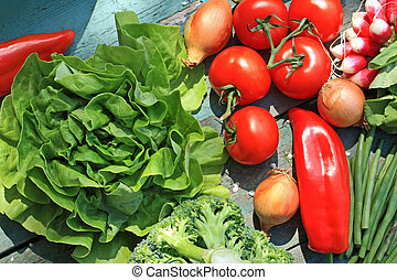 A collection of fresh vegetables