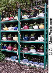A collection of teapots with plants in them