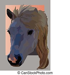 pet horse - a color image picture frame pet horse