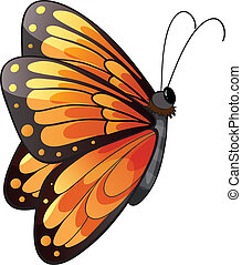A colorful butterfly - Illustration of a colorful butterfly...