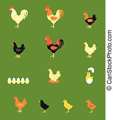 A colorful farm birds collection. Vector Illustration of...