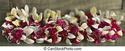 A colorful hawaiian lei