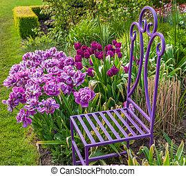 A colorful spring tulip garden