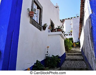 A colorful Street in the medieval town of Obidos, Portugal.