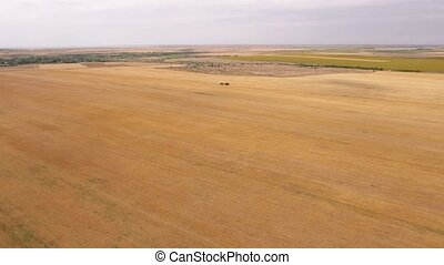 A combine harvester is seen from a far flying drone. The...