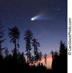 A comet in the evening sky - A bright comet is flying in the...