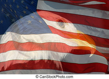 A composite of two photos taken by the author - bald eagle and American flag combined into one photo.