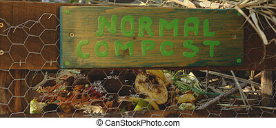 A compost bin, for organic garbage.