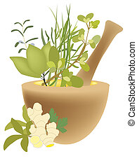 herbs - a computer generated illustration about herbs