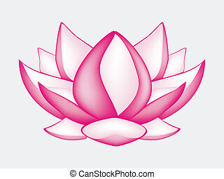 a computer generated illustration about lotus flower