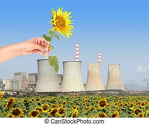 A concept of renewanle energy