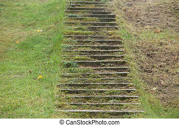A concrete staircase between the grass