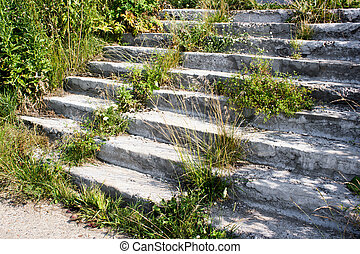 A concrete staircase with sprouted grass