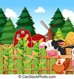 A corn farm with animals