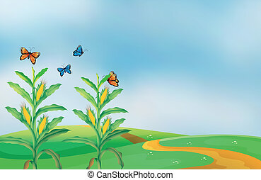 A corn field at the hill with butterflies - Illustration of...