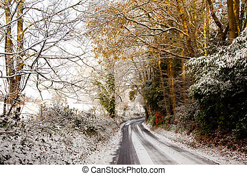 a country lane in the snow on a sunny day