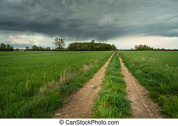 A country road in a green field and a rainy cloud