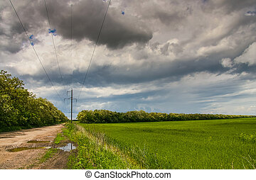A country road in the spring