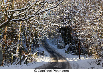 A country road with trees covered in snow, Wales UK.