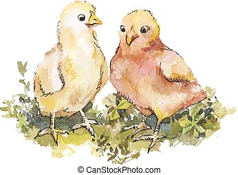 A couple of cute chickens on grass watercolor. Easter illustration for greeting card.