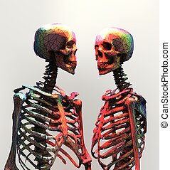A couple of polygonal skeleton in rainbow color on bright background