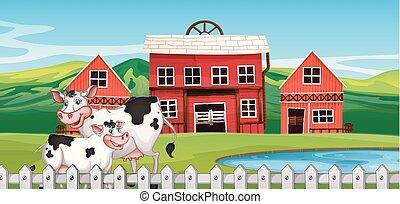 A cow on farmland