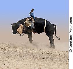 A cowboy falling off a bucking bull