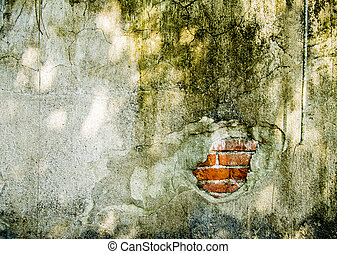 A cracked on the wall