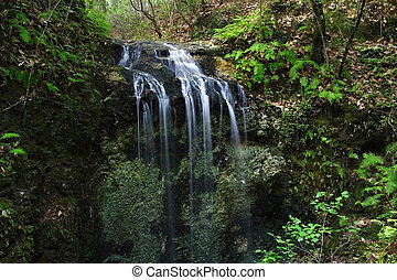 Falling Waters State Park - A creek cascades into a...