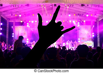 a crowd of people at concert